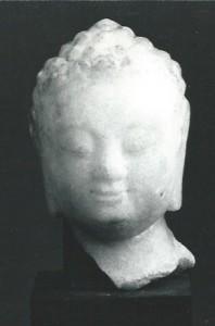 Buddhino fronte
