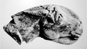 osso o avorio