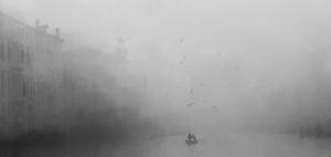nebbia palazzi sandolo gabbiani