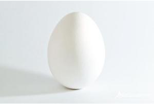 uovo-solo